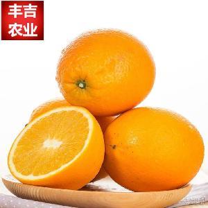 一件代發江西贛南臍橙高山臍橙新鮮水果批發時令水果10斤裝包郵