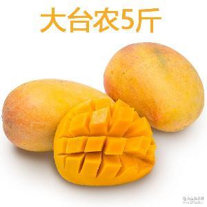 廣西臺農芒果 新鮮百色大臺農芒果5斤裝包郵 單果約250G
