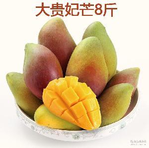 广西百色贵妃芒新鲜芒果水果 大贵妃红金龙芒果 8斤装包邮