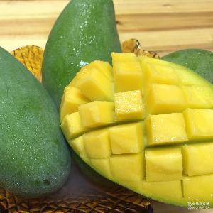 廣西百色金煌芒芒果 多汁新鮮水果 一件代發 5斤包郵
