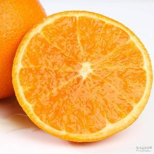 農夫鄉情湖北秭歸倫晚臍橙 三峽新鮮時令水果橙子大果9斤包郵