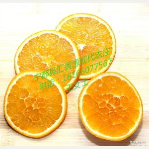 宁都特产 自产自销 新鲜现摘冬季热销有机水果 江西赣南脐橙批发