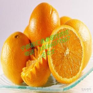 新鲜现摘水果批发新品上市 赣南脐橙江西特产 有机橙子常州销售点