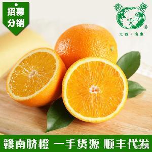 正宗贛南臍橙新鮮水果江西贛州信豐紐荷爾黃橙子果園直供廠家批發