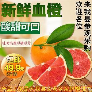 湖南崀山 新宁特产 南橙?#26377;?#40092;孕妇水果脐橙血橙 赣 红心橙