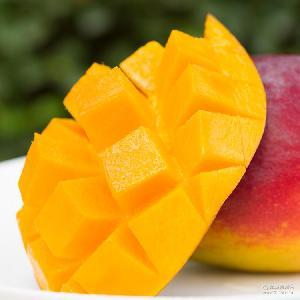 可一件代发 包邮 果园直摘新鲜芒果 攀枝花特产吉禄芒果5斤装