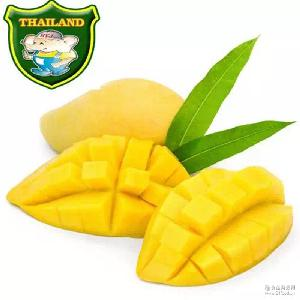 大量批發銷售泰國進口新鮮金腰芒果 廠家直銷金腰芒果