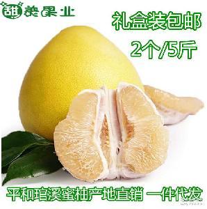 预售平和琯溪蜜柚孕妇新鲜水果白心柚子沙田柚自家果园现摘诚招代