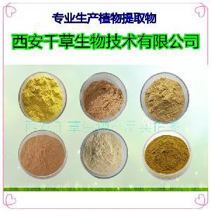 菩提树花提取物 浓缩粉 浸膏粉 水溶粉 颗粒 纯浸膏 厂家生产