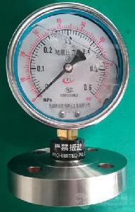 耐震不锈钢隔膜压力表