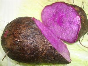 新鲜农产品宏鸿一站式食材食堂配送-紫山药