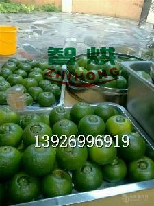 供应智烘牌干燥方法绿色安全的柑普茶烘干机