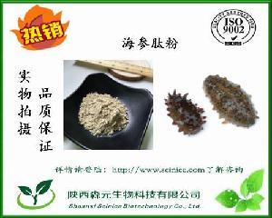 海参肽 海参蛋白75% 海参提取物 海参肽粉 厂家现货 品质保证