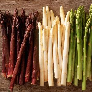 紫色芦笋 芦笋种子 四季盆栽阳台蔬菜籽 多年生高产