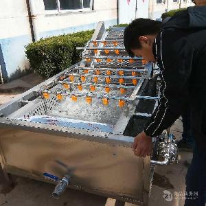 青毛豆清洗机
