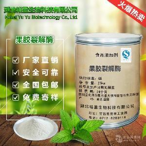 果胶裂解酶 食品级添加剂 600酶活 生物酶制剂厂家直销