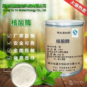 厂家直销核酸酶 食品级核酸酶 核酸酶 含量99% 价格优惠