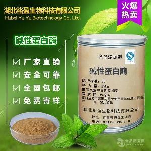 厂价供应食品级 碱性蛋白酶 酶制剂 高酶活力 可分装