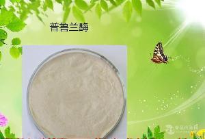 食品級普魯蘭酶