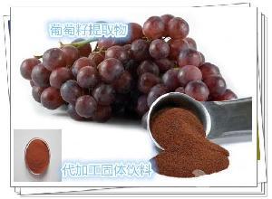 原花青素 95%葡萄籽提取物  葡萄果粉 OEMODM贴牌 代理