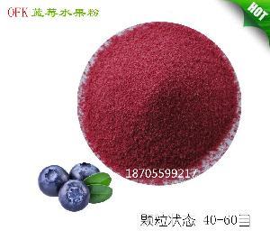 免费拿样 台湾进口喷雾干燥速溶天然蓝莓水果粉 蓝莓粉