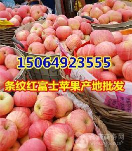 山东红富士苹果交易价格,红富士苹果批发价格