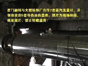 食品厂导热油炉专用热量表