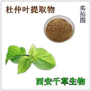 杜仲叶水溶粉 厂家生产动植物提取物定做杜仲叶浓缩浸膏