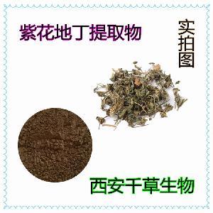 紫花地丁提取物 厂家生产动植物提取物定做紫花地丁浓缩浸膏