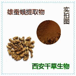 雄蚕蛾提取物 厂家生产纯天然动植物提取物定做雄蚕蛾流浸膏