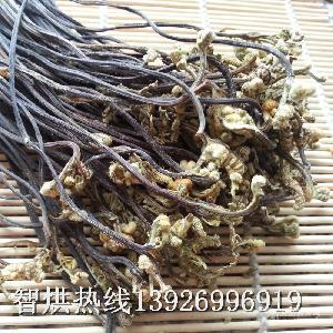供应节能佳价格合理的蕨菜烘干机械