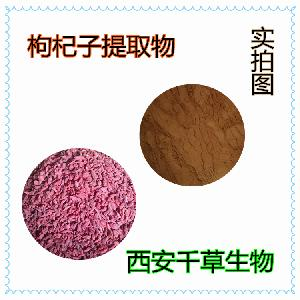 枸杞浸膏粉 厂家生产天然提取物定做枸杞浓缩流浸膏