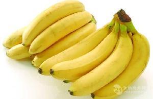宏鴻集團--長沙分公司食材配送-香蕉