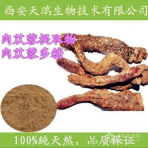 肉苁蓉提取物明星产品