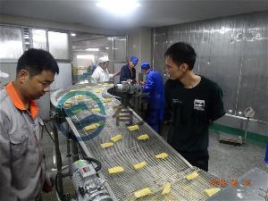 全自动带鱼块鱼排裹糠机