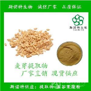 大麦芽提取物 富硒麦芽粉 麦芽粉 麦角甾醇 包邮