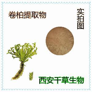 卷柏浓缩粉 厂家定制天然提取物 按需定做卷柏浓缩纯浸膏颗粒