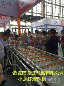 厂家定制蔬菜清洗设备   罗汉果清洗机    花菜气泡清洗机
