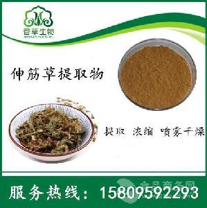 伸筋草提取物10:1伸筋草濃縮粉牛尾菜濃縮液大順筋藤粉噴霧干燥粉