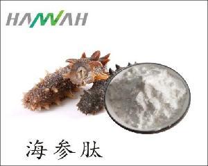 海参肽 海参提取物 海参多肽粉 优质原料 欢迎咨询