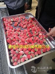 榴蓮速凍機     芒果單凍機     水果隧道單凍機