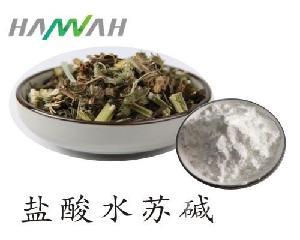 益母草提取物 盐酸水苏碱98% 优质原料 厂家直销