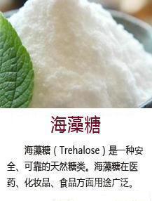 海藻糖生产厂家/专业供应海藻糖