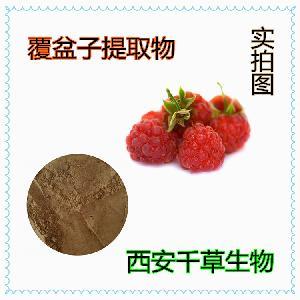 覆盆子提取物 覆盆子粉易溶 厂家生产定做纯浸膏