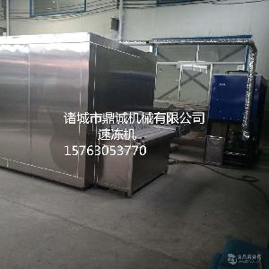 专业生产小龙虾隧道式速冻机    海鲜速冻设备