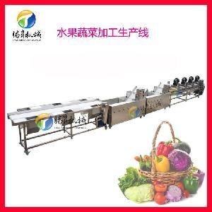 果蔬清洗加工机械设备 果蔬清洗风干分选生产线