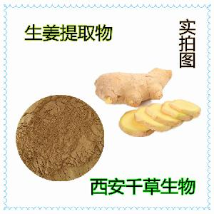 姜提取物 厂家生产动植物提取物 定做天然浓缩姜流浸膏