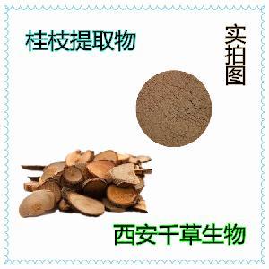 桂枝粉 桂枝浓缩粉 厂家生产动植物提取物桂枝纯浸膏
