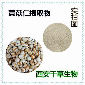 薏苡仁提取物 纯天然浓缩 实力厂家定做薏苡仁颗粒