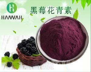黑莓花青素5% 25% 多种规格 可定制 黑莓提取物